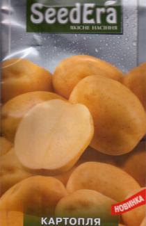 Насіння картопля Ілона 0,02г