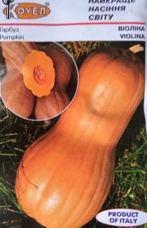 Насіння гарбуза Віоліна 2г (Коуел Італія)
