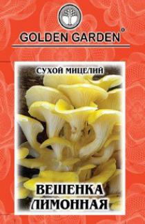 Насіння сухий міцелій грибів Гливаа лимонна 10г