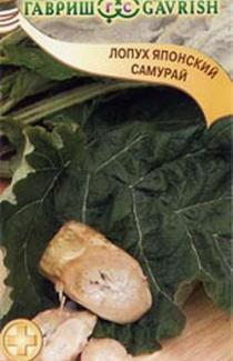 Семена лопуха японского Самурай 20шт