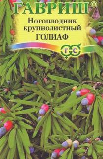 Насіння Ногоплодник Голіаф 3шт