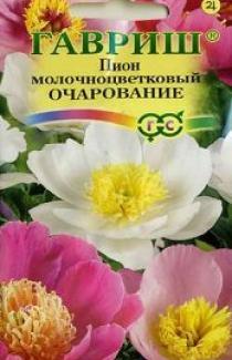 Насіння Піон Молочноквітковий Очарованіє 3 шт