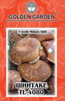 Насіння сухий міцелій грибів Шіітаке 4080 10г