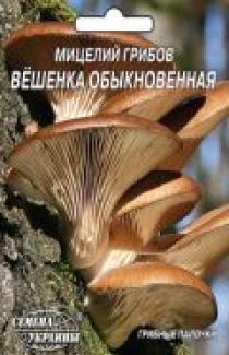 Насіння міцелій грибів Глива звичайна 10шт