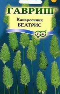 Насіння Канареєчника канарського Беатріс (1г)
