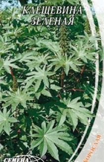 Насіння Рицини зеленої (1г)