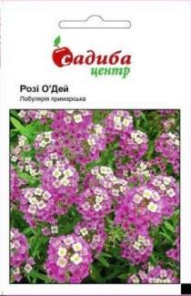 Насіння Лобулярії Розі О'Дей (0,1г)