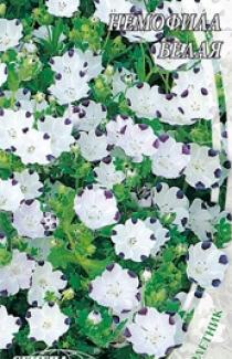 Насіння Немофіли білої (0,5г)