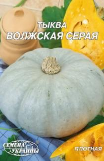 Насіння гарбуза Волзький сірий  20г