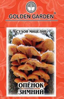 Насіння сухий міцелій грибів Опеньок зимовий 10г