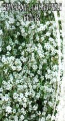 Насіння Гіпсофіла Повзуча Біла 0,2г