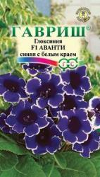 Насіння  Глоксинія  Аванті  синя з білим  краєм  5шт