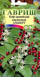 Насіння Кава аравійська  карлікова  Альберт  5шт