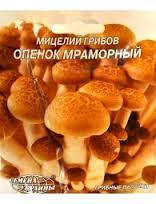 Насіння міцелій грибів Опеньок мармуровий 10шт