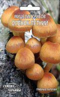Насіння міцелій грибів Опеньок літній 10шт