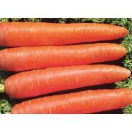 Насіння моркви Памела 0,5кг