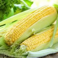 Насіння кукурудзи цукрової  SX-659 1кг