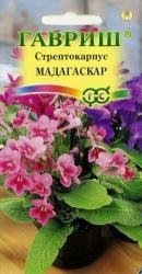 Насіння Стрептокарпуса Мадагаскар суміш 5шт