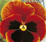 Насіння віоли великоквіткової Полумя 0,1г