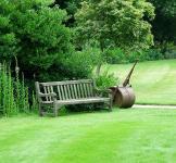 Англійський газон (насіння) 1 кг