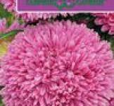 Насіння Айстри Балон рожевий 0,1г (Гавриш)