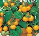 Насіння помідора Балконне диво золоте 0,1г