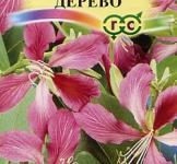 Насіння Баухінія Орхідейне дерево 1г