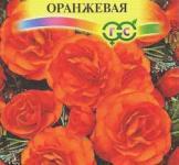 Насіння Бегонія Нон-стоп оранжева 4шт (Гавриш)