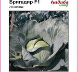 Насіння капусти Бригадир F1 20шт (Clause Франція)