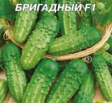 Насіння огірка  Бригадний 4г