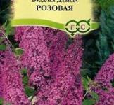 Насіння Будлея Давіда Рожева 0,1г