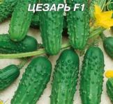 Насіння  огірка  Цезар F1 4г
