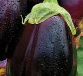 Насіння баклажана Чорний красень 0,5г