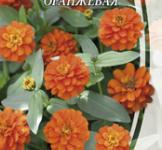Насіння Майорців низькорослих оранжевих (0,5г)