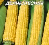 Насіння кукурудзи Деликатесна 0,5кг