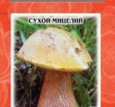 Насіння сухий міцелій грибів Дубовик звичайний 10г