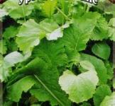 Насіння гірчиці листової Прима (серія Урожай на вікні) ТМ «Гавриш» (1г)
