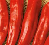 Насіння перця солодкого  Горн Червоний 0,3г