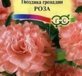 Насіння Гвоздика Гренадін  Роза 0,1г