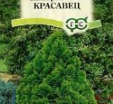 Насіння Кіпарісовік Красавец 0,1г