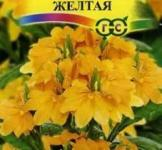 Насіння Кроссандра Тропік жовта 3шт (Гавриш)