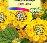 Насіння Лантана Камара Любава 0,1г