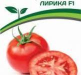 Насіння помідора Ліріка F1 0.1г (Партнер)