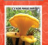 Насіння сухий міцелій грибів Лисичка звичайна 10г