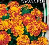 Насіння Чорнобривців відхилених Болеро (0.5г)