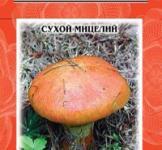 Насіння сухий міцелій грибів Масльонок звичайний 10г