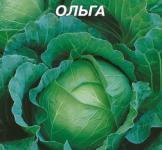 Насіння капусти б/г Ольга 10г