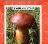 Насіння сухий міцелій грибів Польський гриб 10г