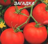 Насіння помідора Загадка 3г