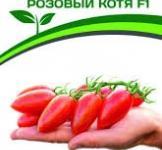 Насіння помідора Рожевий котя F1 10шт (Партнер)